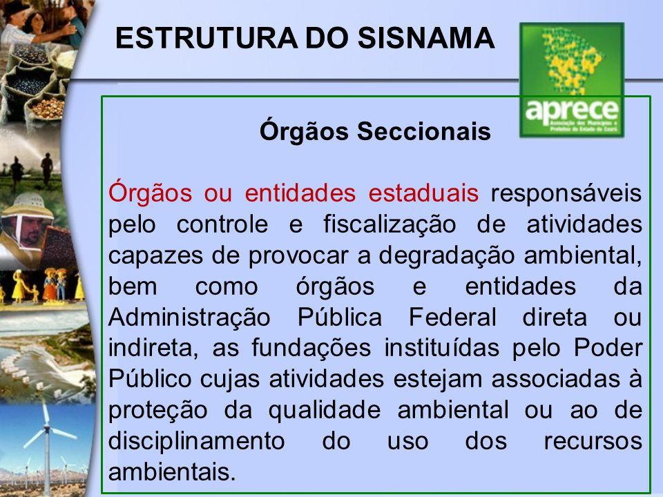 ESTRUTURA DO SISNAMA Órgãos Seccionais Órgãos ou entidades estaduais responsáveis pelo controle e fiscalização de atividades capazes de provocar a deg