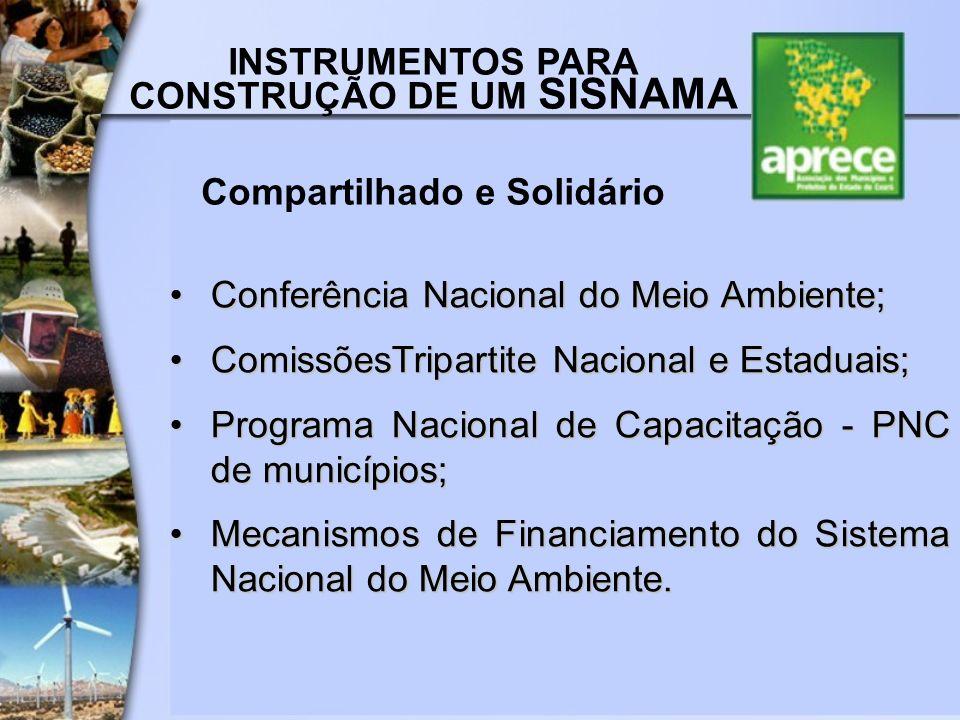 INSTRUMENTOS PARA CONSTRUÇÃO DE UM SISNAMA Compartilhado e Solidário Conferência Nacional do Meio Ambiente;Conferência Nacional do Meio Ambiente; Comi