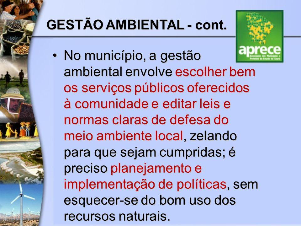 No município, a gestão ambiental envolve escolher bem os serviços públicos oferecidos à comunidade e editar leis e normas claras de defesa do meio amb