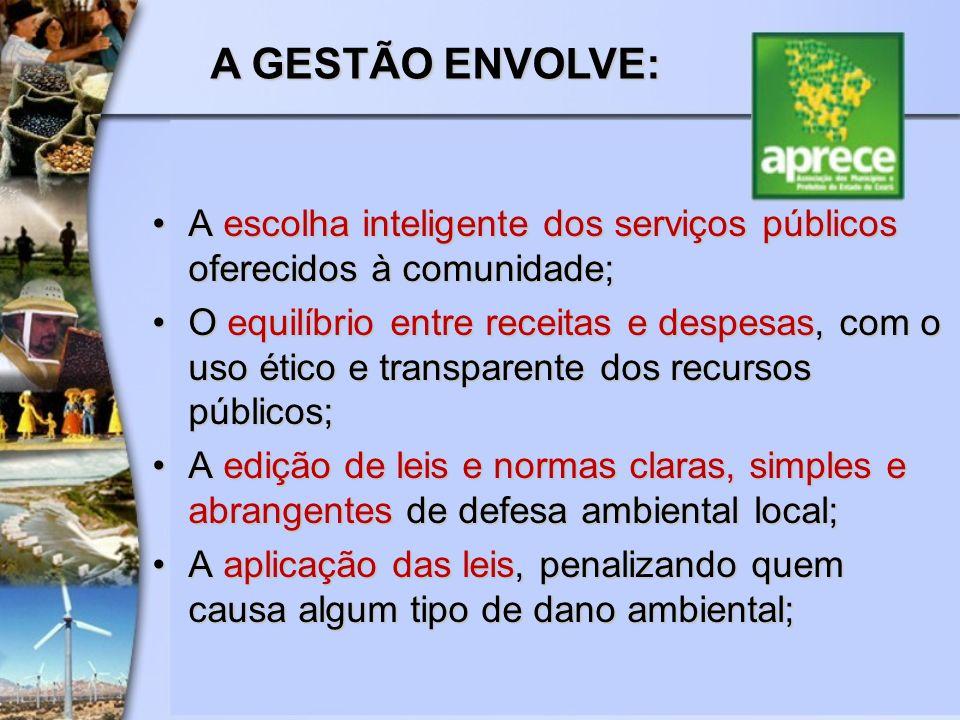 A escolha inteligente dos serviços públicos oferecidos à comunidade;A escolha inteligente dos serviços públicos oferecidos à comunidade; O equilíbrio