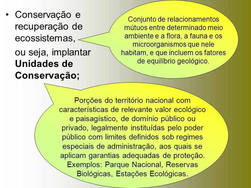 Conservação e recuperação de ecossistemas, ou seja, implantar Unidades de Conservação; Porções do território nacional com características de relevante