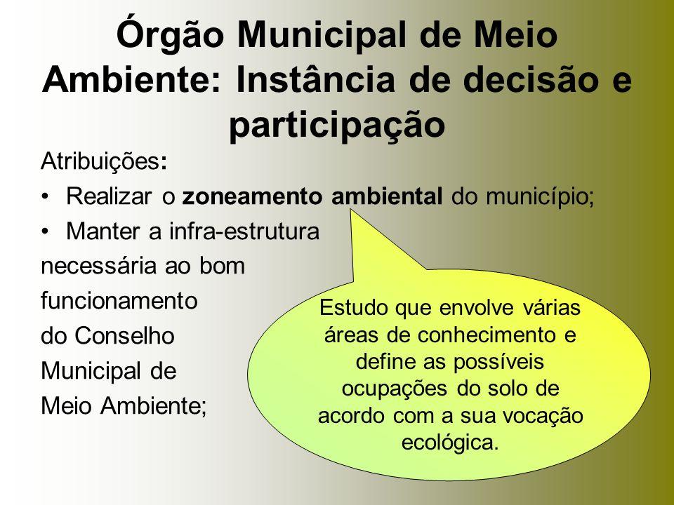 Atribuições: Realizar o zoneamento ambiental do município; Manter a infra-estrutura necessária ao bom funcionamento do Conselho Municipal de Meio Ambi