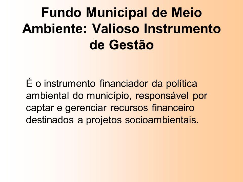 É o instrumento financiador da política ambiental do município, responsável por captar e gerenciar recursos financeiro destinados a projetos socioambi
