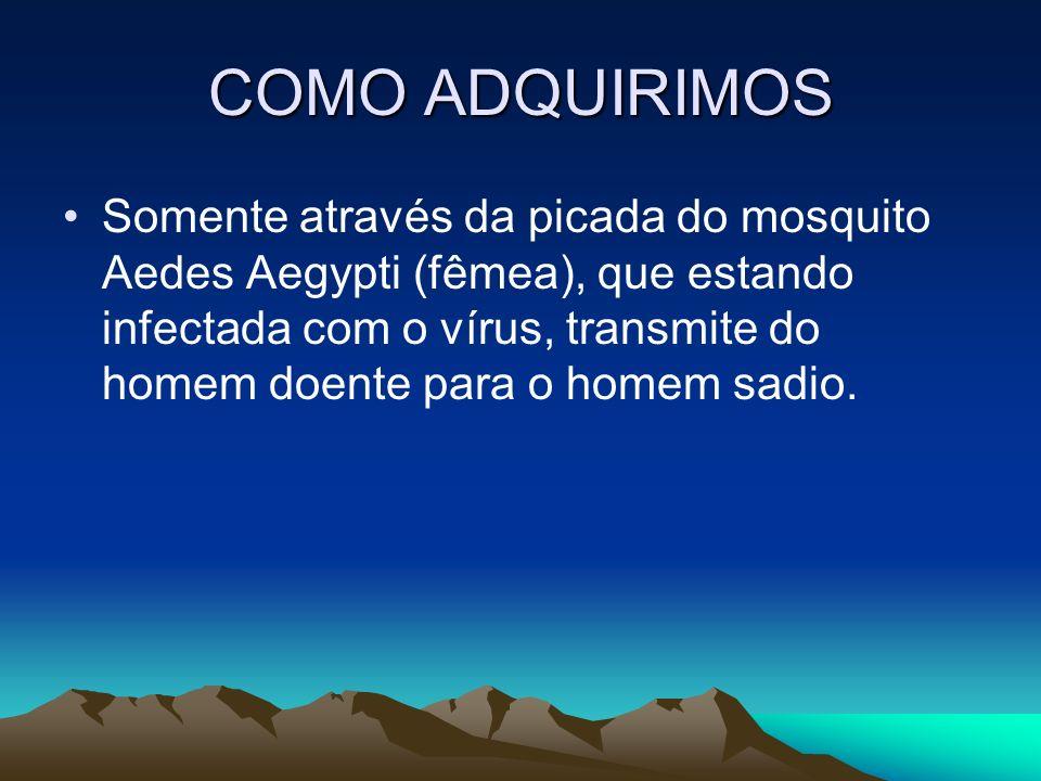 COMO ADQUIRIMOS Somente através da picada do mosquito Aedes Aegypti (fêmea), que estando infectada com o vírus, transmite do homem doente para o homem