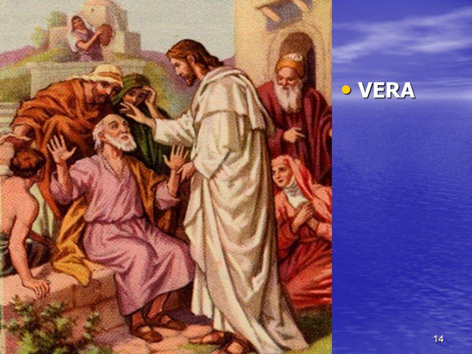 VERA VERA 14