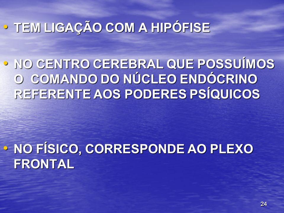 24 TEM LIGAÇÃO COM A HIPÓFISE TEM LIGAÇÃO COM A HIPÓFISE NO CENTRO CEREBRAL QUE POSSUÍMOS O COMANDO DO NÚCLEO ENDÓCRINO REFERENTE AOS PODERES PSÍQUICO