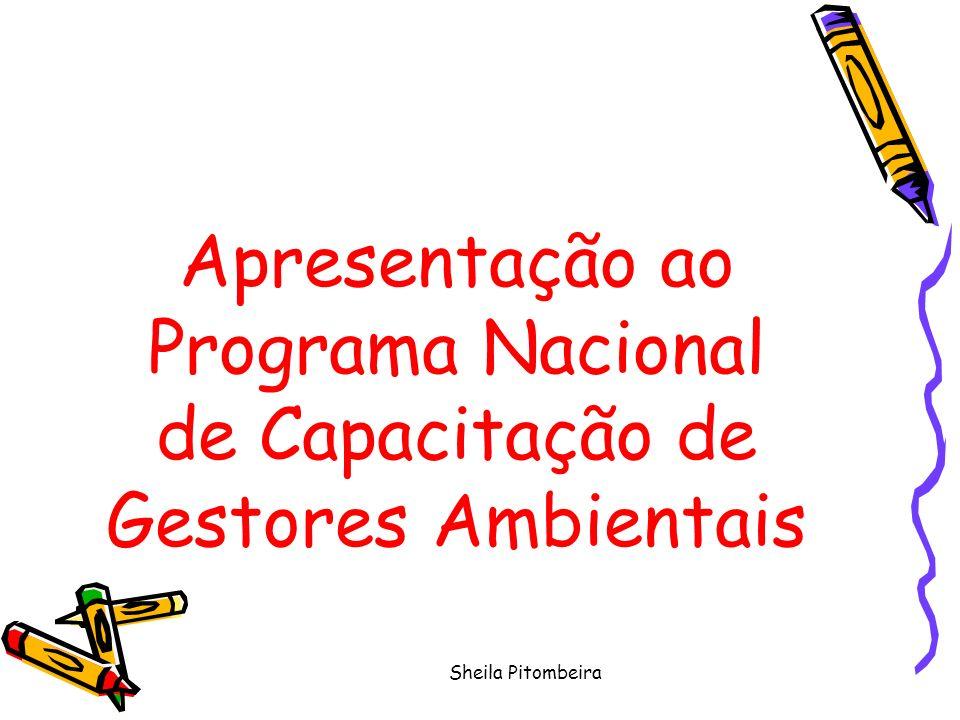 Sheila Pitombeira Apresentação ao Programa Nacional de Capacitação de Gestores Ambientais