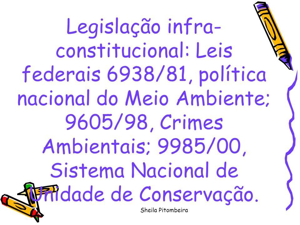 Sheila Pitombeira Legislação infra- constitucional: Leis federais 6938/81, política nacional do Meio Ambiente; 9605/98, Crimes Ambientais; 9985/00, Sistema Nacional de Unidade de Conservação.