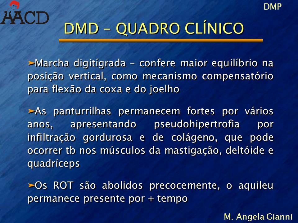 DMP M. Angela Gianni DMD – QUADRO CLÍNICO äMarcha digitígrada – confere maior equilíbrio na posição vertical, como mecanismo compensatório para flexão