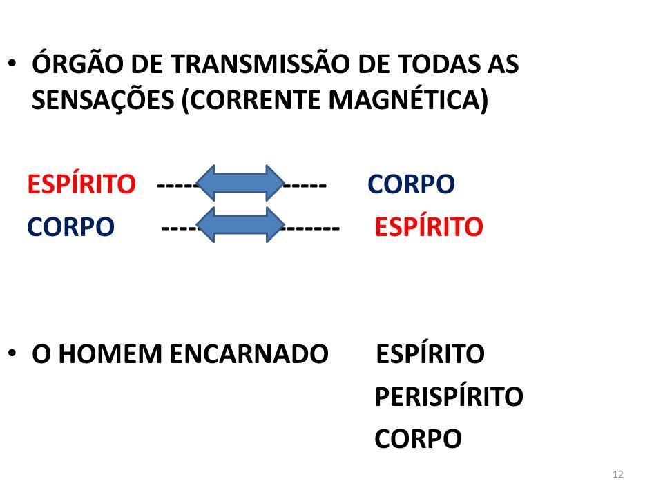 12 ÓRGÃO DE TRANSMISSÃO DE TODAS AS SENSAÇÕES (CORRENTE MAGNÉTICA) ESPÍRITO ------------------- CORPO CORPO -------------------- ESPÍRITO O HOMEM ENCA