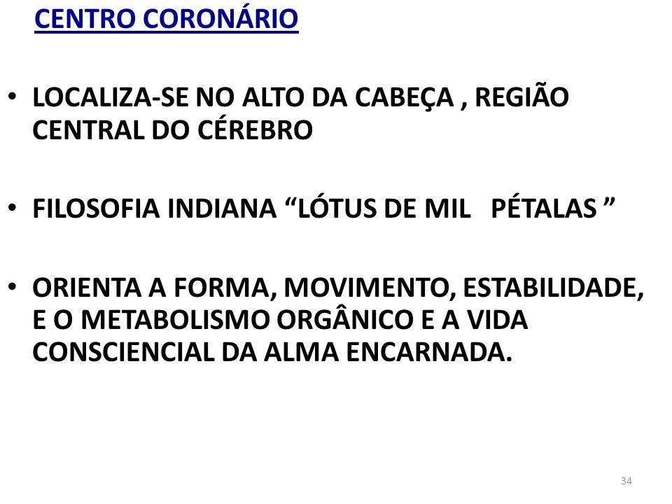 34 CENTRO CORONÁRIO LOCALIZA-SE NO ALTO DA CABEÇA, REGIÃO CENTRAL DO CÉREBRO FILOSOFIA INDIANA LÓTUS DE MIL PÉTALAS ORIENTA A FORMA, MOVIMENTO, ESTABI