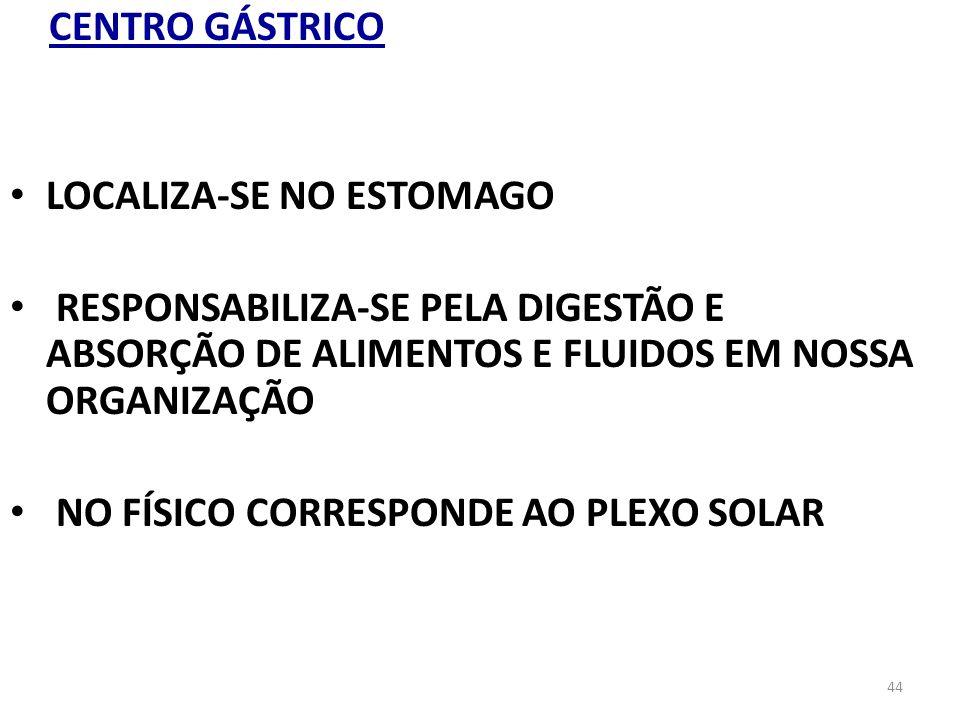 44 CENTRO GÁSTRICO LOCALIZA-SE NO ESTOMAGO RESPONSABILIZA-SE PELA DIGESTÃO E ABSORÇÃO DE ALIMENTOS E FLUIDOS EM NOSSA ORGANIZAÇÃO NO FÍSICO CORRESPOND