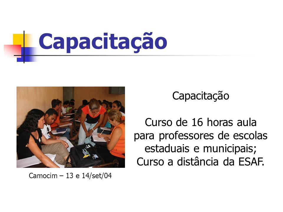 Capacitação Curso de 16 horas aula para professores de escolas estaduais e municipais; Curso a distância da ESAF. Camocim – 13 e 14/set/04
