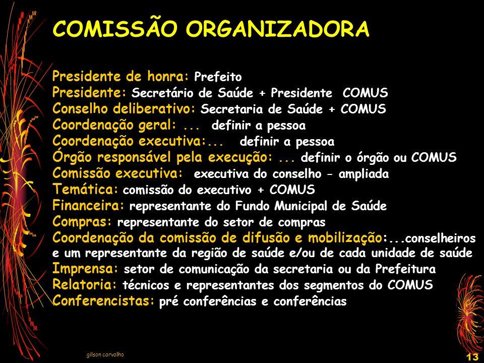 gilson carvalho 13 COMISSÃO ORGANIZADORA Presidente de honra: Prefeito Presidente: Secretário de Saúde + Presidente COMUS Conselho deliberativo: Secre