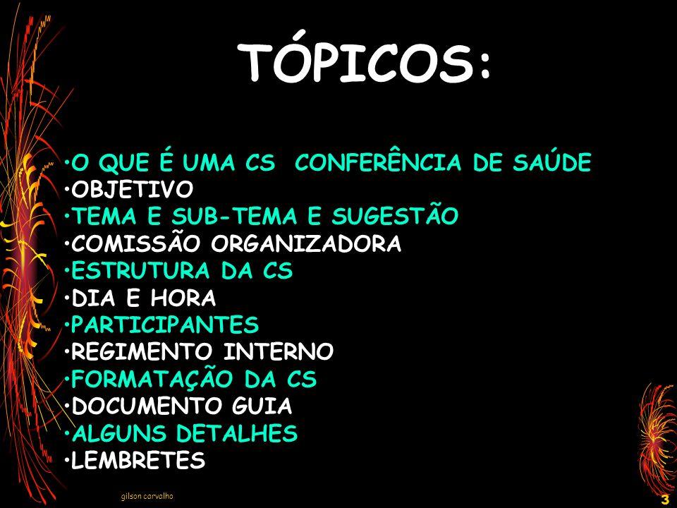gilson carvalho 14 ESTRUTURA DA CONFERÊNCIA Considerar a conferência como um conjunto de eventos e não o dia final apenas.