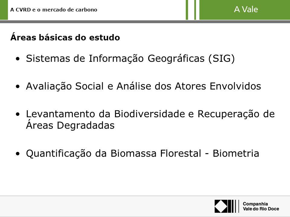A CVRD e o mercado de carbono Áreas básicas do estudo Sistemas de Informação Geográficas (SIG) Avaliação Social e Análise dos Atores Envolvidos Levantamento da Biodiversidade e Recuperação de Áreas Degradadas Quantificação da Biomassa Florestal - Biometria