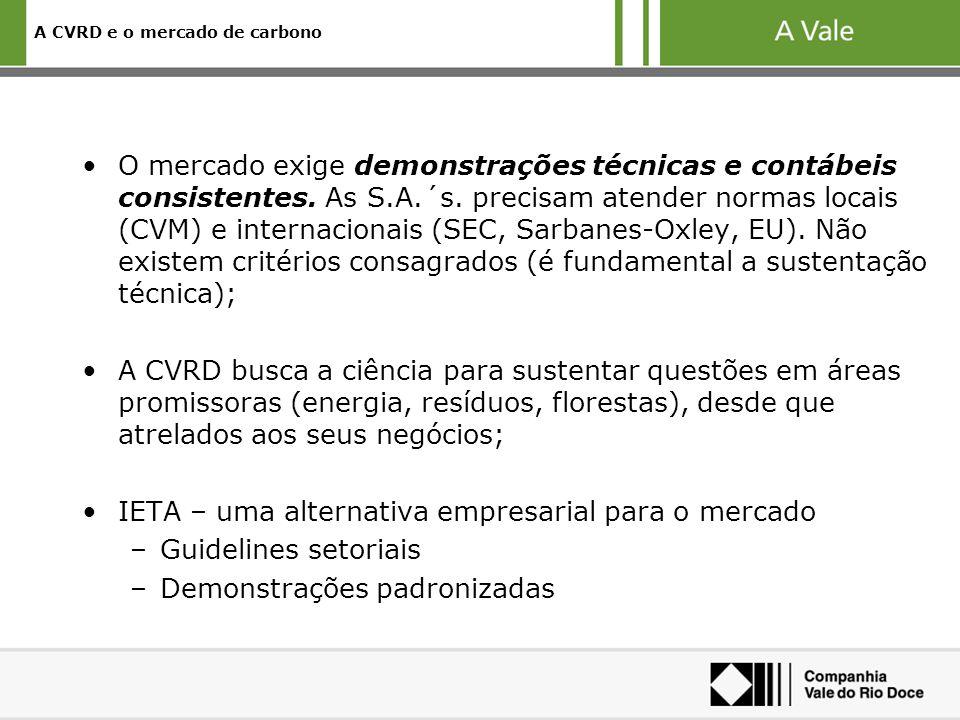 A CVRD e o mercado de carbono O mercado exige demonstrações técnicas e contábeis consistentes. As S.A.´s. precisam atender normas locais (CVM) e inter