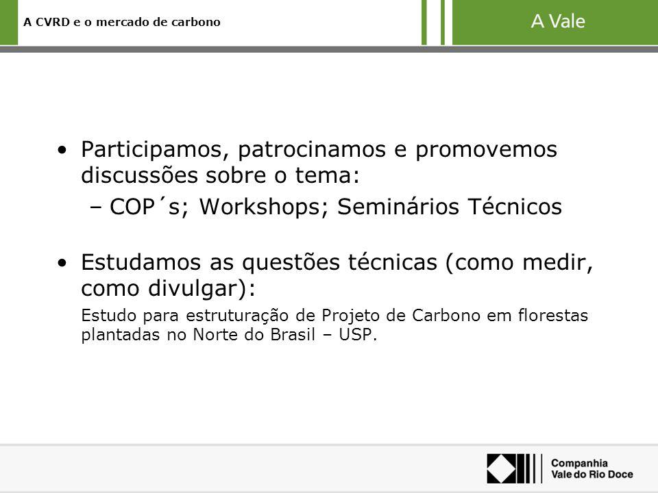A CVRD e o mercado de carbono Participamos, patrocinamos e promovemos discussões sobre o tema: –COP´s; Workshops; Seminários Técnicos Estudamos as questões técnicas (como medir, como divulgar): Estudo para estruturação de Projeto de Carbono em florestas plantadas no Norte do Brasil – USP.