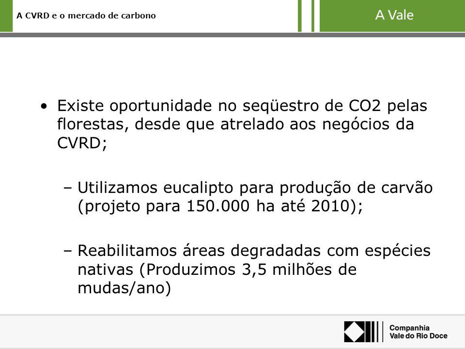 A CVRD e o mercado de carbono Existe oportunidade no seqüestro de CO2 pelas florestas, desde que atrelado aos negócios da CVRD; –Utilizamos eucalipto para produção de carvão (projeto para 150.000 ha até 2010); –Reabilitamos áreas degradadas com espécies nativas (Produzimos 3,5 milhões de mudas/ano)