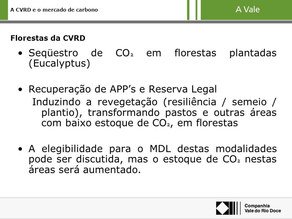 A CVRD e o mercado de carbono Florestas da CVRD Seqüestro de CO ² em florestas plantadas (Eucalyptus) Recuperação de APPs e Reserva Legal Induzindo a