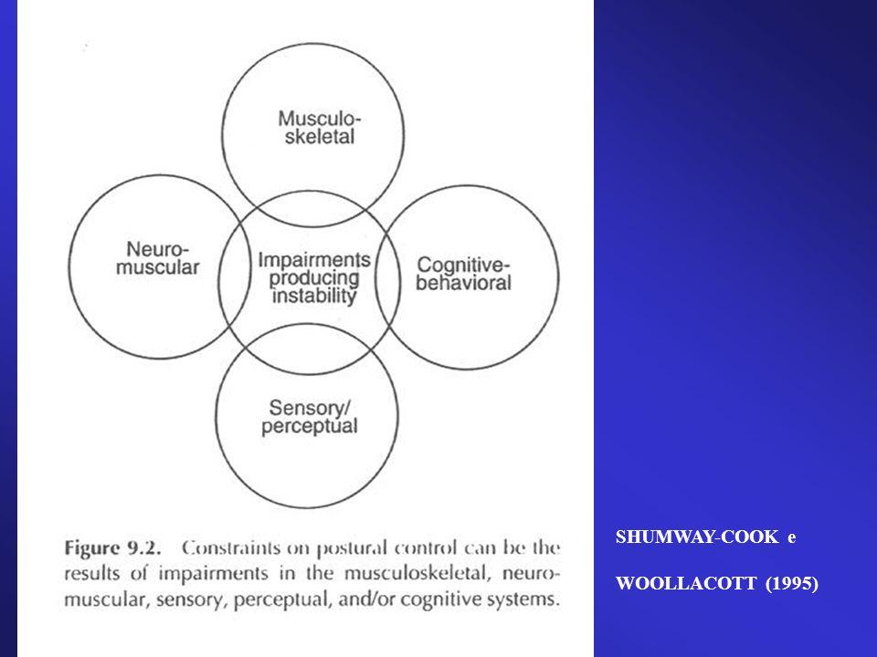 SHUMWAY-COOK e WOOLLACOTT (1995)