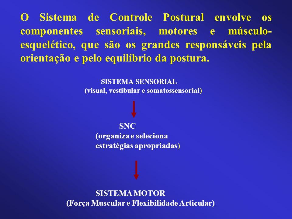 O Sistema de Controle Postural envolve os componentes sensoriais, motores e músculo- esquelético, que são os grandes responsáveis pela orientação e pe