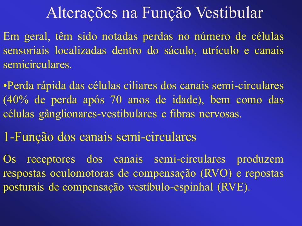 Alterações na Função Vestibular Em geral, têm sido notadas perdas no número de células sensoriais localizadas dentro do sáculo, utrículo e canais semi