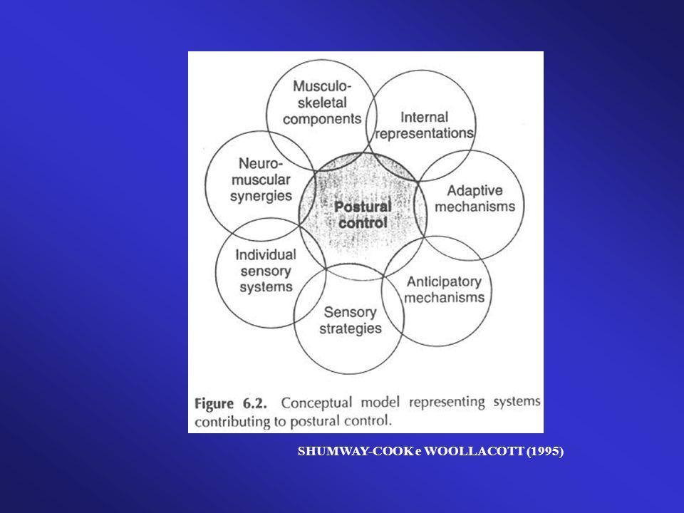 Testes funcionais - Timed get up and go ( OLSON,1998 ) - Berg balance test ( THORBAHN E NEWTON,1996) - POMA/ POMA - Brasil ( TINETTI, 1986; GOMES, 2003 ) - Functional reach test ( BERG ET AL., 1992) - GARS ( WOLFSON ET AL., 1994) - PPT ( REUBEN E SIU, 1990) - PPME ( WINOGRAD, LEMMSKY,NEVIT,1994)