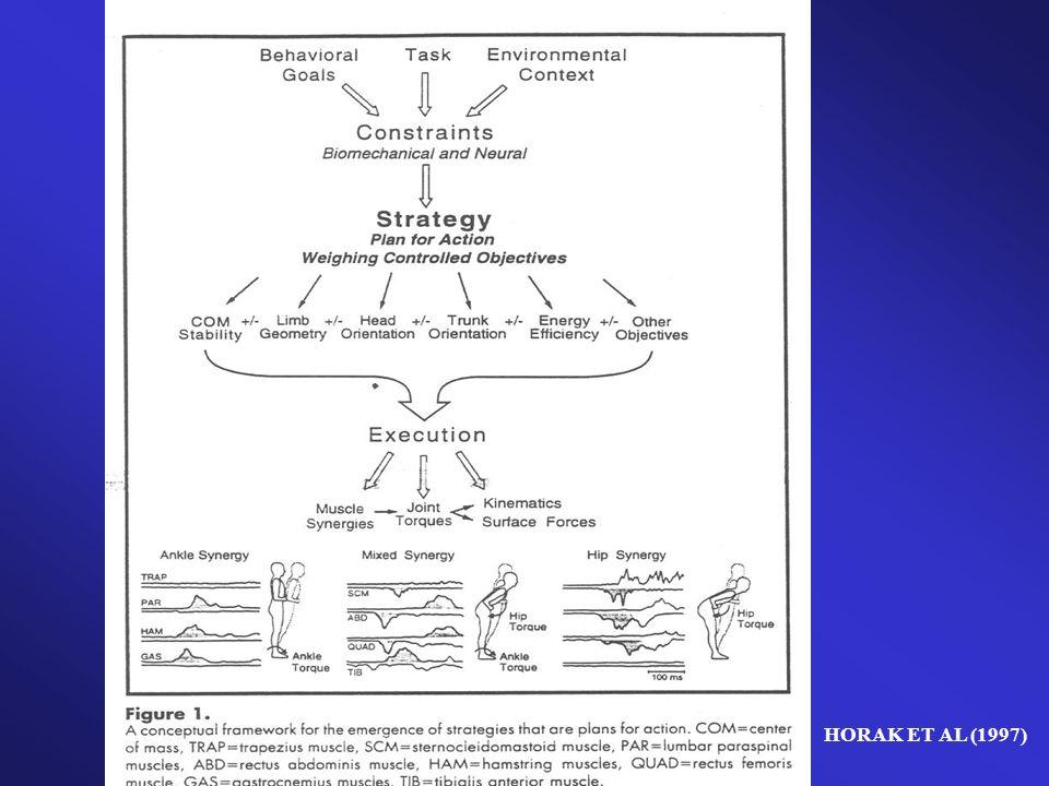 Proposta de Atividades Pesquisas realizadas com praticantes de tai-chi- chuan demonstraram que essa prática traz benefícios para o equilíbrio, uma vez que é sempre exigido uma consciência do alinhamento do tronco e dos movimentos coordenados com os segmentos corporais.