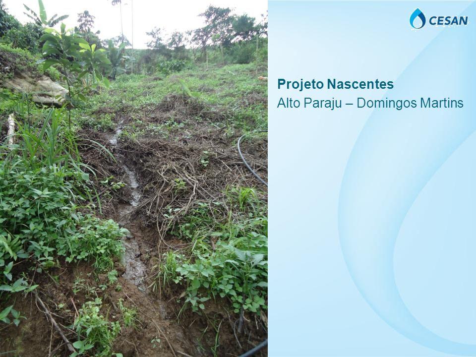Projeto Nascentes Alto Paraju – Domingos Martins