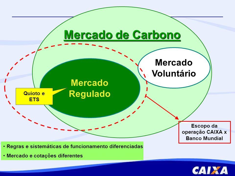 1.Estruturação de projetos de Mecanismo de Desenvolvimento Limpo (MDL) 2.