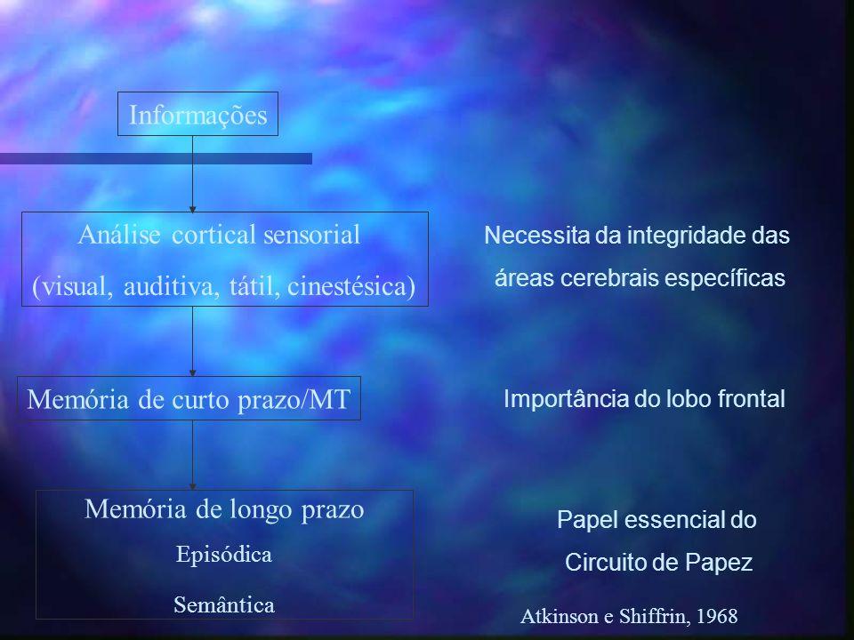 Informações Análise cortical sensorial (visual, auditiva, tátil, cinestésica) Memória de curto prazo/MT Memória de longo prazo Episódica Semântica Nec
