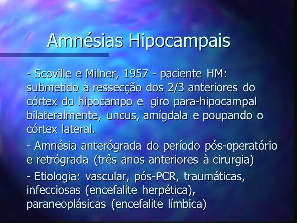 Amnésias Hipocampais - Scoville e Milner, 1957 - paciente HM: submetido à ressecção dos 2/3 anteriores do córtex do hipocampo e giro para-hipocampal b