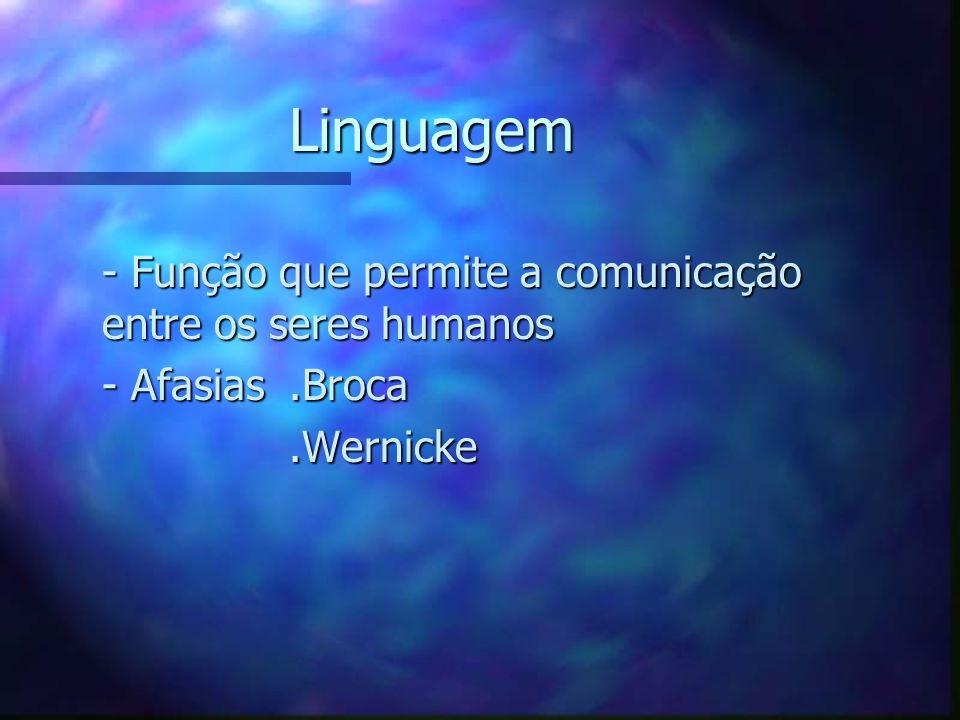 Linguagem - Função que permite a comunicação entre os seres humanos - Função que permite a comunicação entre os seres humanos - Afasias.Broca - Afasia