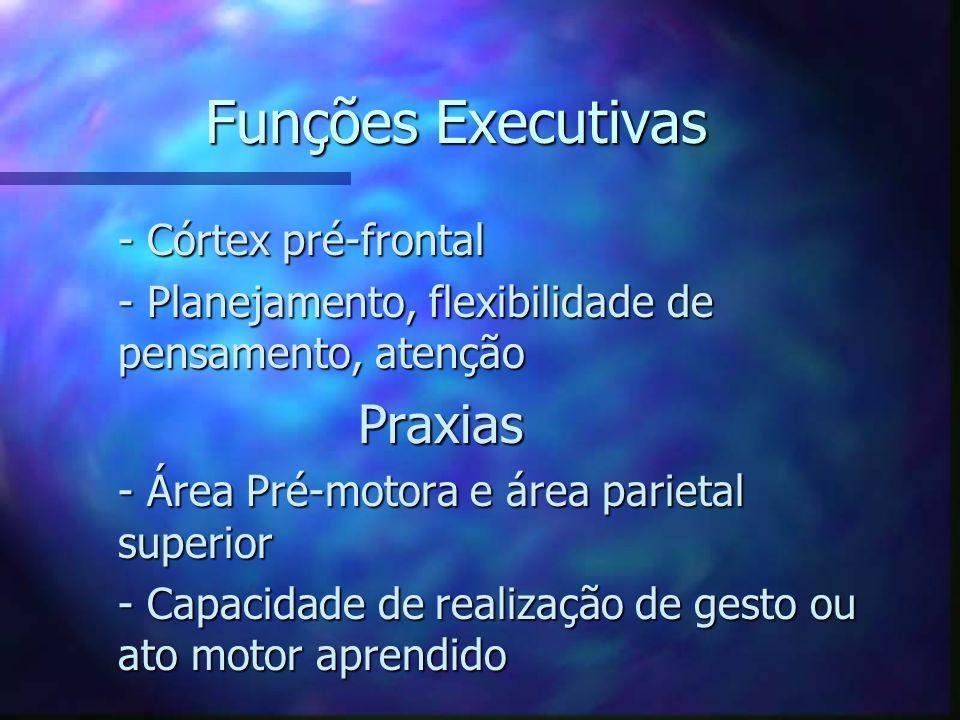 Funções Executivas - Córtex pré-frontal - Córtex pré-frontal - Planejamento, flexibilidade de pensamento, atenção - Planejamento, flexibilidade de pen