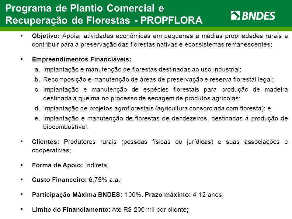 Programa de Plantio Comercial e Recuperação de Florestas - PROPFLORA Objetivo: Apoiar atividades econômicas em pequenas e médias propriedades rurais e