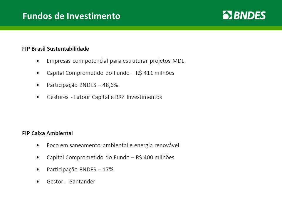 FIP Brasil Sustentabilidade Empresas com potencial para estruturar projetos MDL Capital Comprometido do Fundo – R$ 411 milhões Participação BNDES – 48