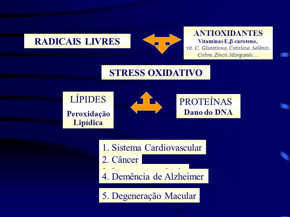 ANTIOXIDANTES E CARDIOPATIA ISQUÊMICA LDL-oxidada Endotélio vascular INJÚRIA ENDOTELIAL: Fatores Quimiotáticos para monócitos Óxido Nítrico Citotoxicidade Recrutamento de Monócitos / Macrócitos Proliferação de células musculares lisas Agregação Plaquetária ATEROSCLEROSE RUPTURA TROMBOSE