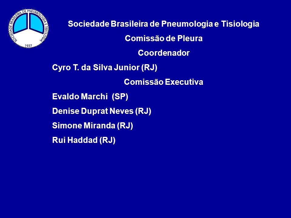 Comissão de Pleura Projeto de Atividades – Biênio 2010-2012 Objetivo Geral: Divulgar a importância da análise do Líquido Pleural e da Pleura para o diagnóstico da causa da Síndrome do Derrame Pleural.