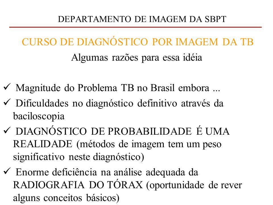 DEPARTAMENTO DE IMAGEM DA SBPT CURSO DE DIAGNÓSTICO POR IMAGEM DA TB Algumas razões para essa idéia Magnitude do Problema TB no Brasil embora...