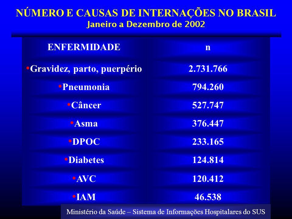 NÚMERO E CAUSAS DE INTERNAÇÕES NO BRASIL Janeiro a Dezembro de 2002 ENFERMIDADEn Gravidez, parto, puerpério2.731.766 Pneumonia794.260 Câncer527.747 As