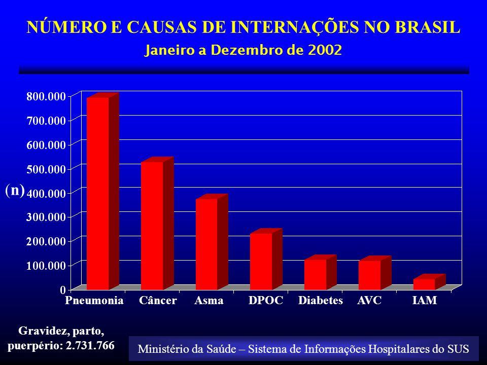 NÚMERO E CAUSAS DE INTERNAÇÕES NO BRASIL Janeiro a Dezembro de 2002 Pneumonia Câncer Asma DPOC Diabetes AVC IAM (n) Ministério da Saúde – Sistema de I