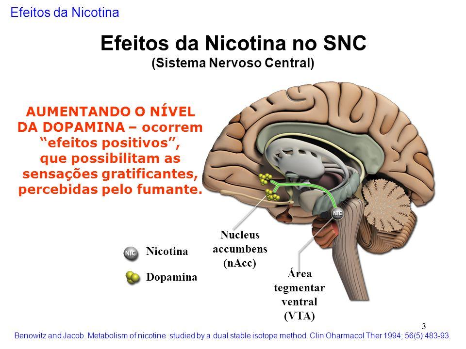 3 Nucleus accumbens (nAcc) Área tegmentar ventral (VTA) Nicotina Dopamina Efeitos da Nicotina no SNC (Sistema Nervoso Central) AUMENTANDO O NÍVEL DA D