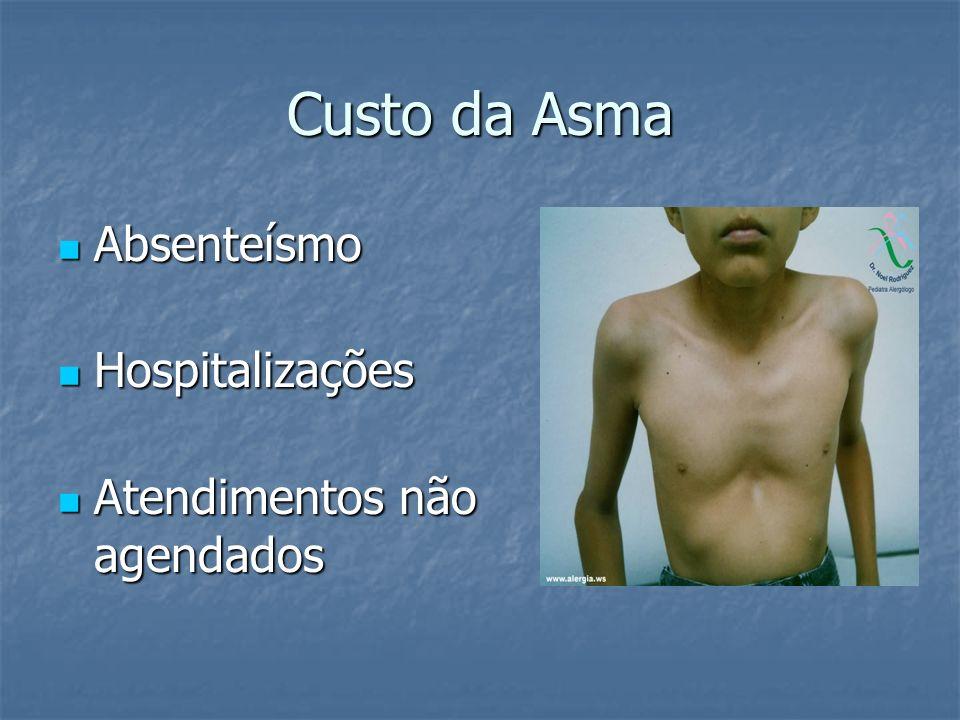 Custo da Asma Absenteísmo Absenteísmo Hospitalizações Hospitalizações Atendimentos não agendados Atendimentos não agendados