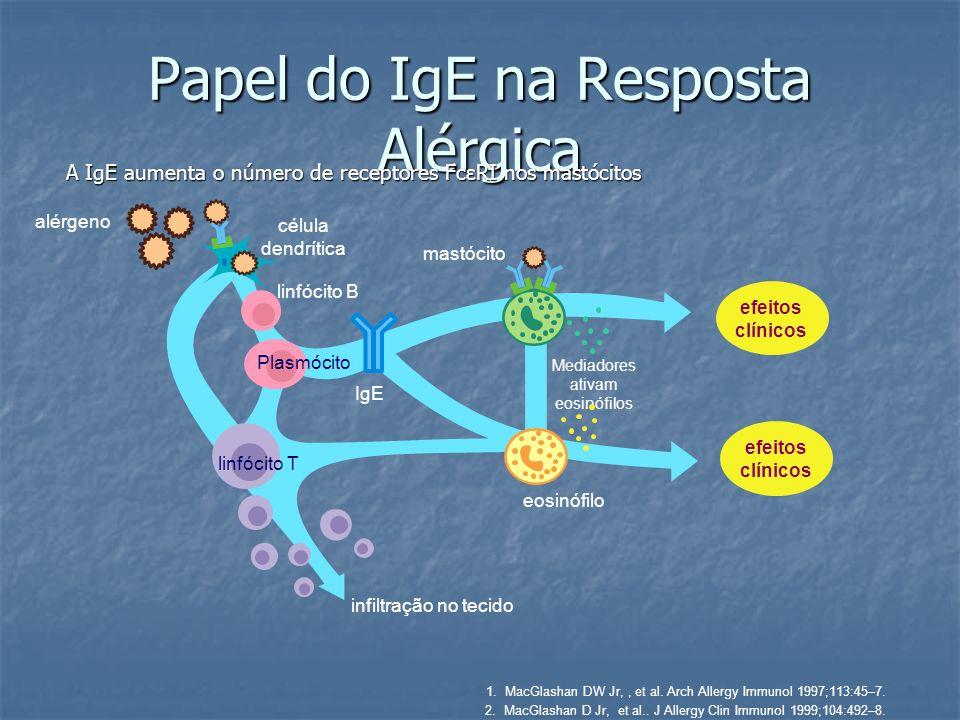 Papel do IgE na Resposta Alérgica A IgE aumenta o número de receptores FcεRI nos mastócitos 1.MacGlashan DW Jr,, et al. Arch Allergy Immunol 1997;113: