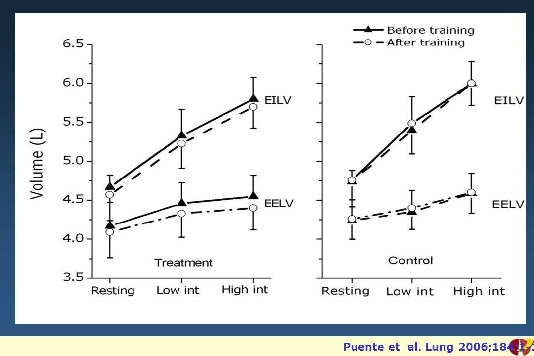 Puente et al. Lung 2006;184;1-10