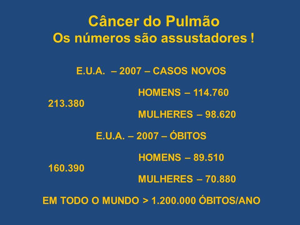 Câncer do Pulmão Os números são assustadores ! E.U.A. – 2007 – CASOS NOVOS HOMENS – 114.760 213.380 MULHERES – 98.620 E.U.A. – 2007 – ÓBITOS HOMENS –