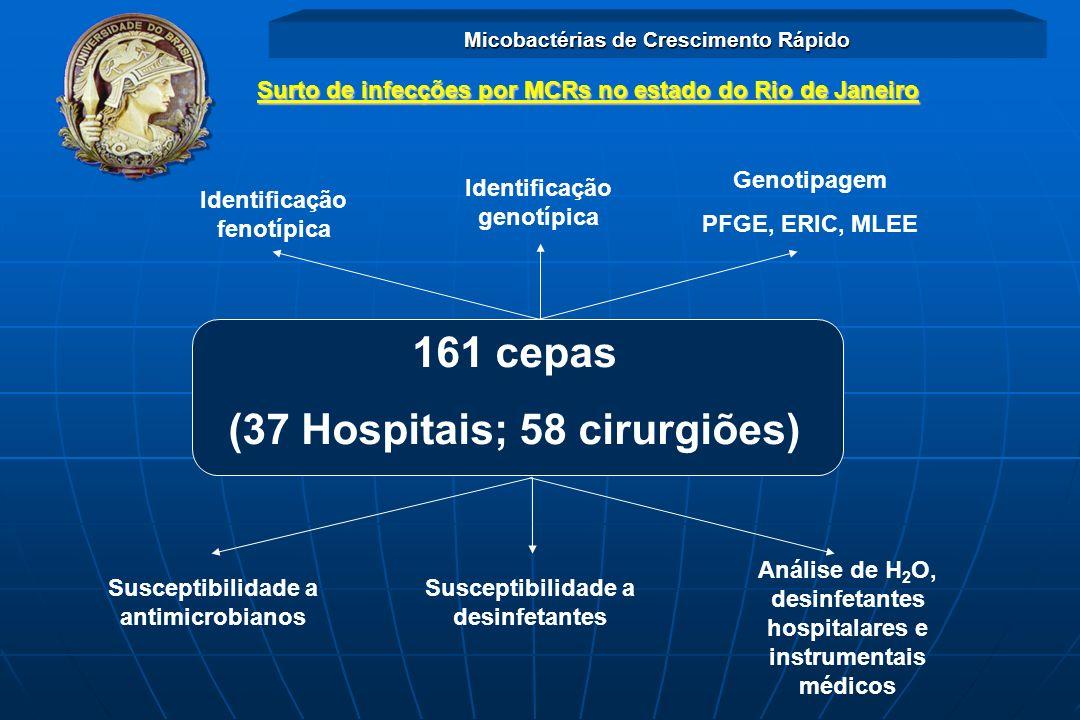 Surto de infecções por MCRs no estado do Rio de Janeiro Identificação fenotípica Identificação genotípica Genotipagem PFGE, ERIC, MLEE Susceptibilidad