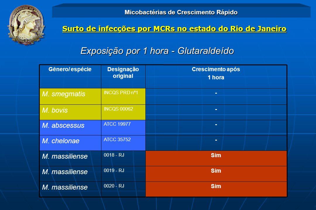 Exposição por 1 hora - Glutaraldeído Sim 0020 - RJ M. massiliense Sim 0019 - RJ M. massiliense Sim 0018 - RJ M. massiliense - ATCC 35752 M. chelonae -