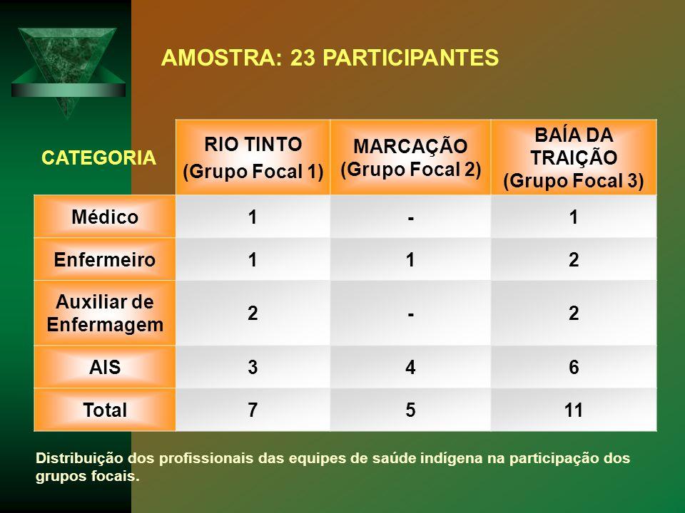 CATEGORIA RIO TINTO (Grupo Focal 1) MARCAÇÃO (Grupo Focal 2) BAÍA DA TRAIÇÃO (Grupo Focal 3) Médico1-1 Enfermeiro112 Auxiliar de Enfermagem 2-2 AIS346
